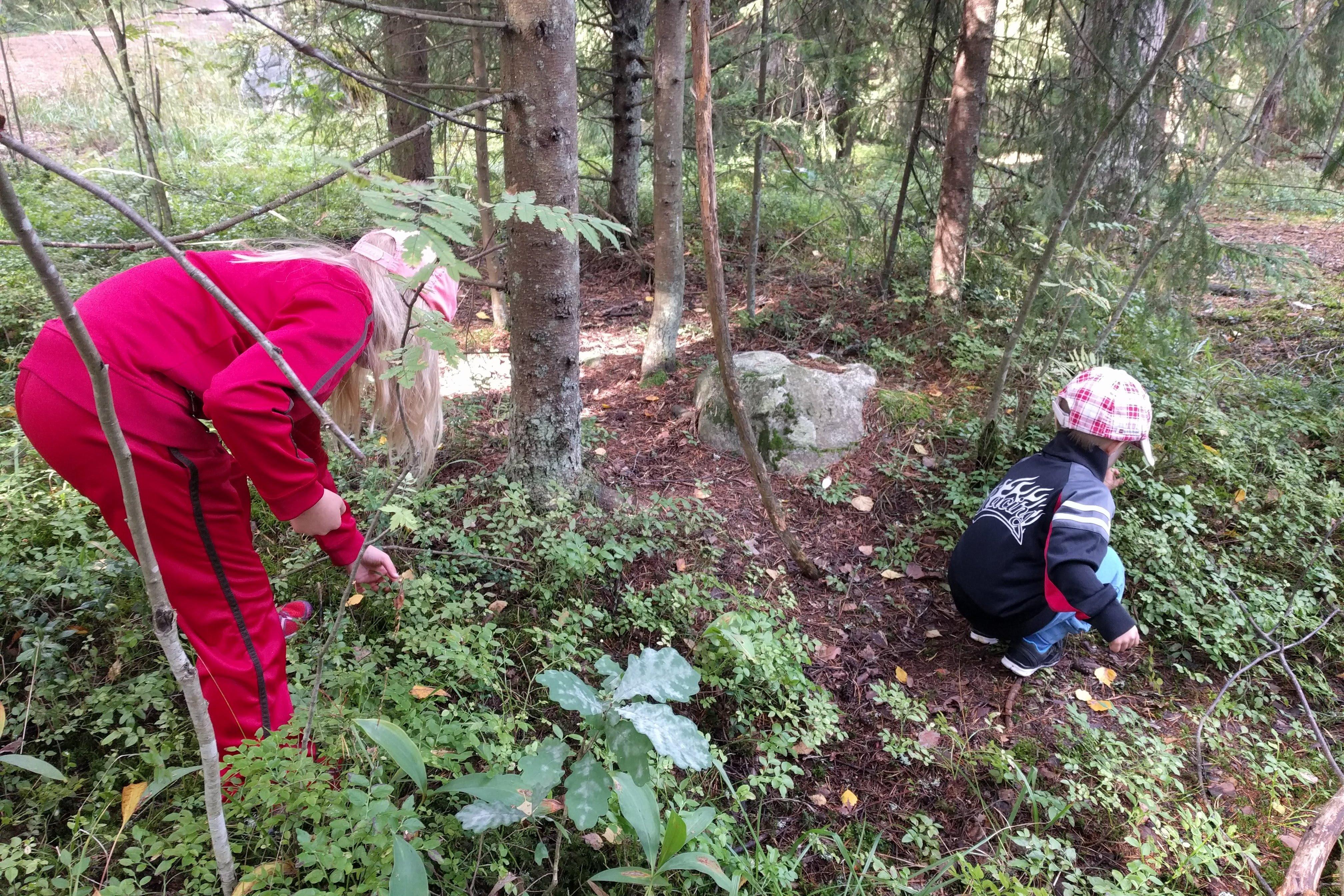 Lapsia metsässä.